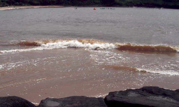 Coastal Waters Polluted After Storms